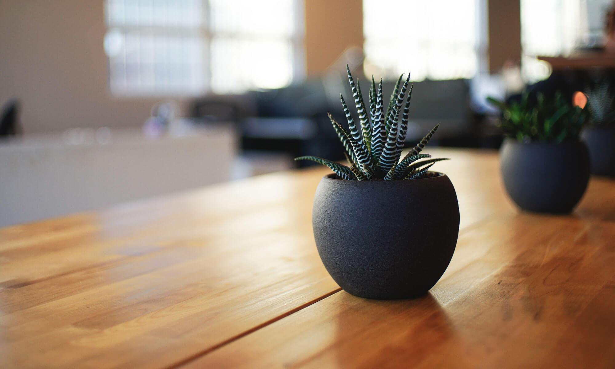 財務一郎の「経営をラクにする財務ブログ」